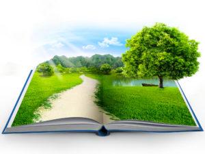 Сегодня празднуется День экологических знаний