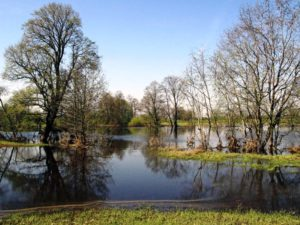 Гидрологическая обстановка на Нижней Волге – весеннее половодье продолжается
