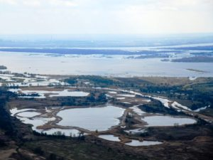 Проект обводнения Волго-Ахтубинской поймы планируется представить на экспертизу в сентябре