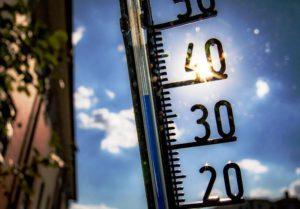 Росгидромет включил 2019 год в четверку самых теплых за всю историю наблюдений