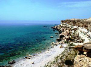 Фильм о природе Каспийского моря вышел на Discovery Channel