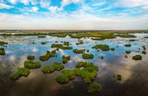 Площадь водно-болотного угодья «Дельта реки Волга» увеличили на 2,1 тыс. га