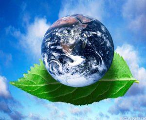 5 июня отмечается Всемирный день окружающей среды