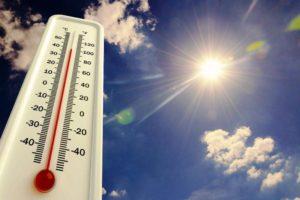Росгидромет назвал регионы, где на этой неделе будет аномальная жара