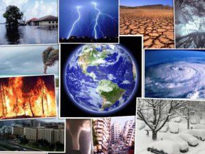 Климатические риски все сильнее влияют на экономику РФ